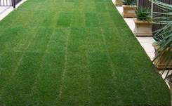 Landscapers landscaping garden design adelaide for Landscaping services adelaide