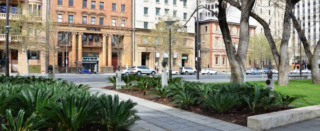 Paving Adelaide | Commercial Landscaping Adelaide
