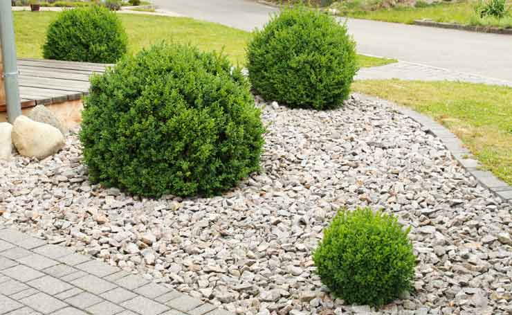 Pebbles adelaide landscaping pebble supplies adelaide sa for Garden designs using pebbles