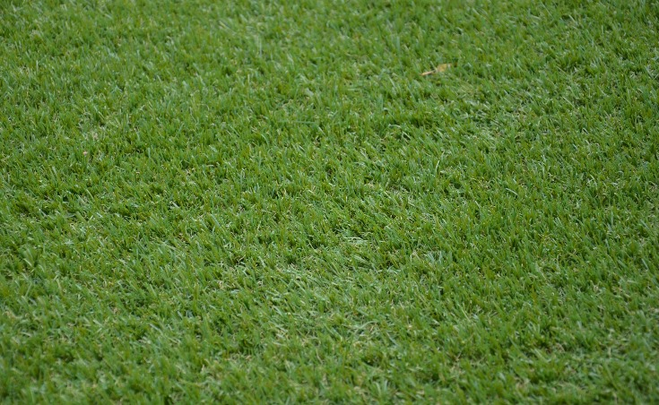 Burnside Synthetic Grass