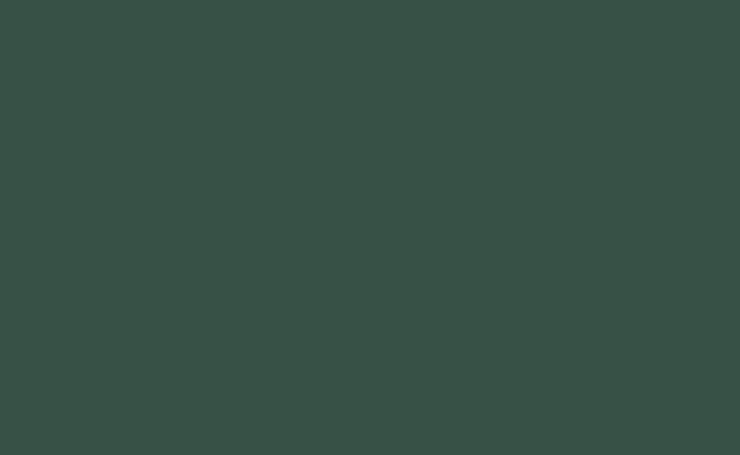 Cottage Green Satin