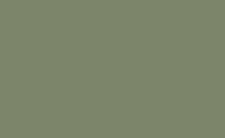 Pale Eucalypt