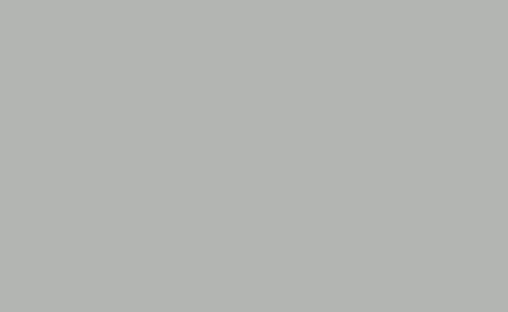 Shale Grey Satin