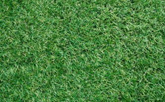 How Your Synthetic Grass Looks