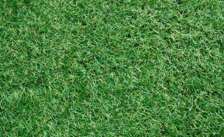 How To Lay Synthetic Grass