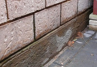 Salt Damp Treatment Adelaide