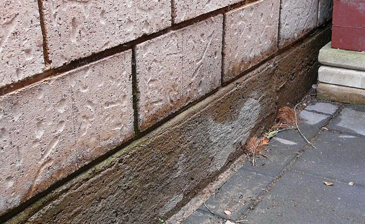 Salt Damp Treatment Adelaide | Landscaping Adelaide