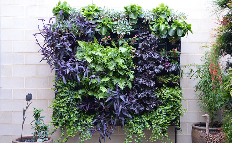 Small Wall Vertical Garden