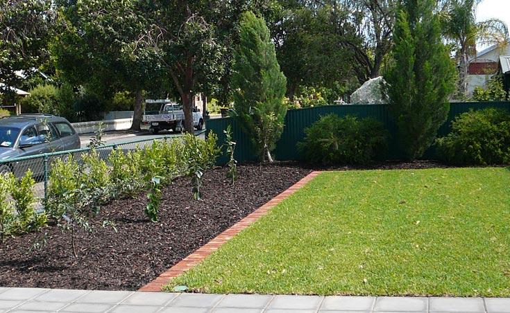 Front Yard Garden Bed