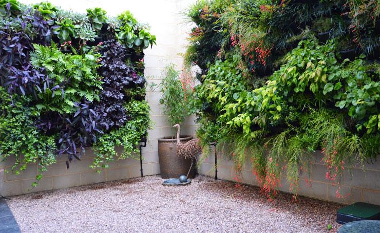 Courtyard Vertical Gardens Adelaide