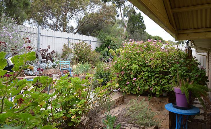 Back Garden Makeover